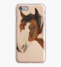 Bay Paint iPhone Case/Skin