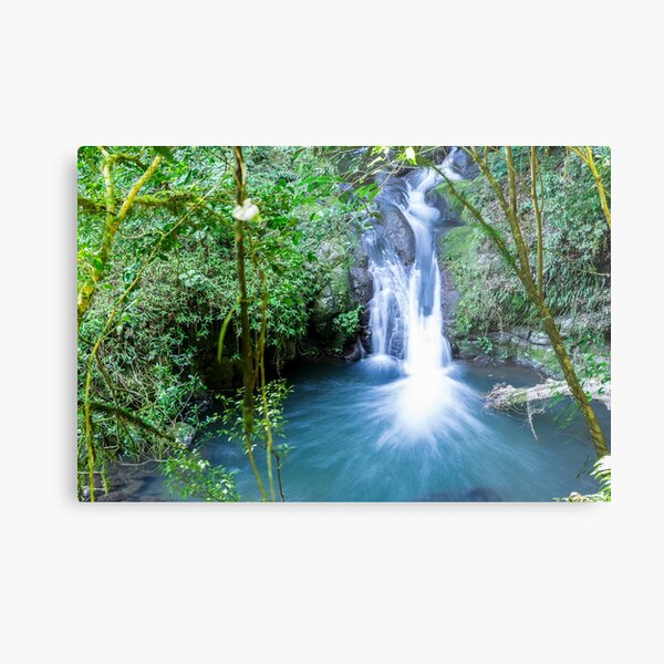 Waterfall in Lamington National Park Metal Print