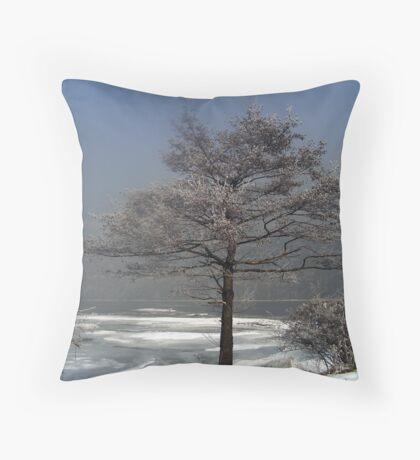 Bulgarian Winter (!) Throw Pillow