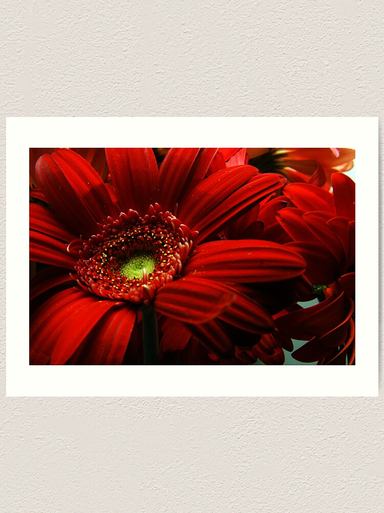 Alternate view of Red Floral Art Print