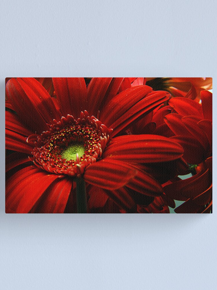 Alternate view of Red Floral Canvas Print