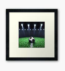Football stadium Framed Print