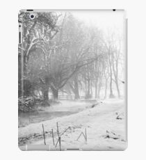 B&W Snow iPad Case/Skin
