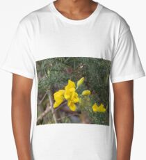 Donegal gold Long T-Shirt