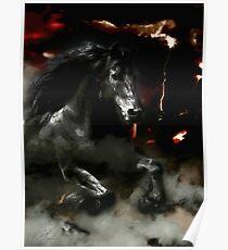 DARK HORSE RISING Poster