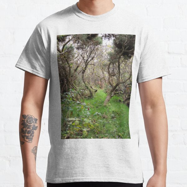 Path to adventure Classic T-Shirt