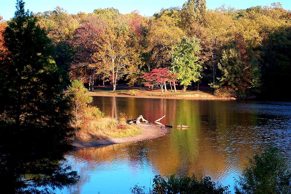 A beautiful fall day by kentuckyblueman