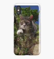 Supercat iPhone Case/Skin