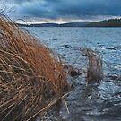 Lake by Mikko  Suhonen