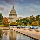 D.C. Fall by vivsworld