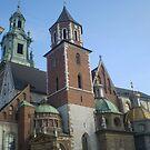 Wawel Royal Castle by Kasia  Kotlarska