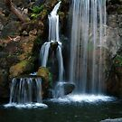 Waterfall by Clayton Bruster