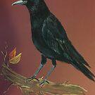 BLACK CROW by Linda Ridpath