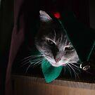 Santa's little helper by turniptowers