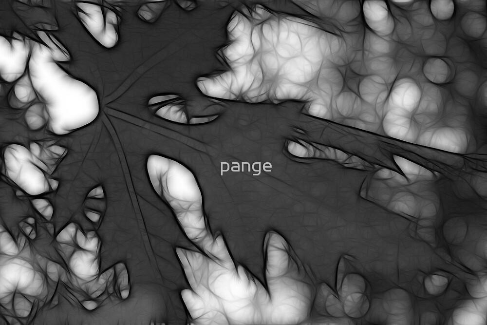 Falling Leaves by pange