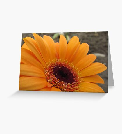 Closely Greeting Card