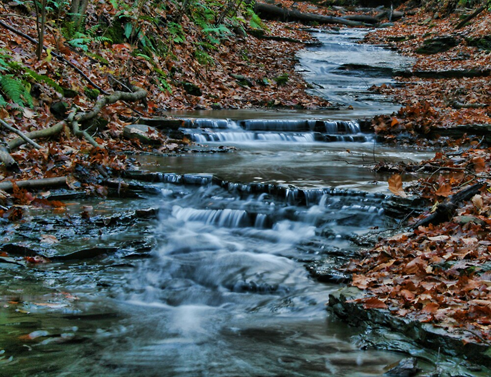 Creekbed by GPMPhotography