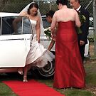 Wedding Love by meerimages