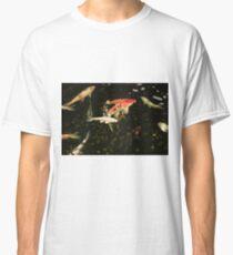 Koi Carps Classic T-Shirt