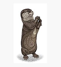 Infatuated Otter Photographic Print