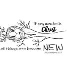 all things are become new by designing31