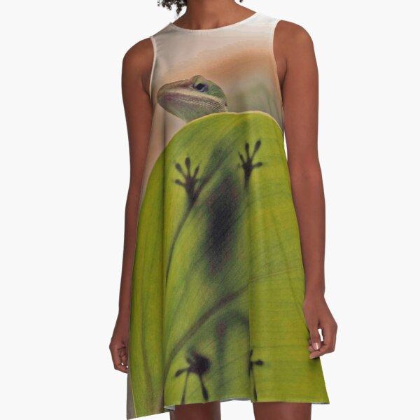 I Spy..... A-Line Dress