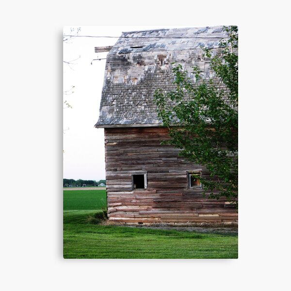 Perfectly Weathered Canvas Print