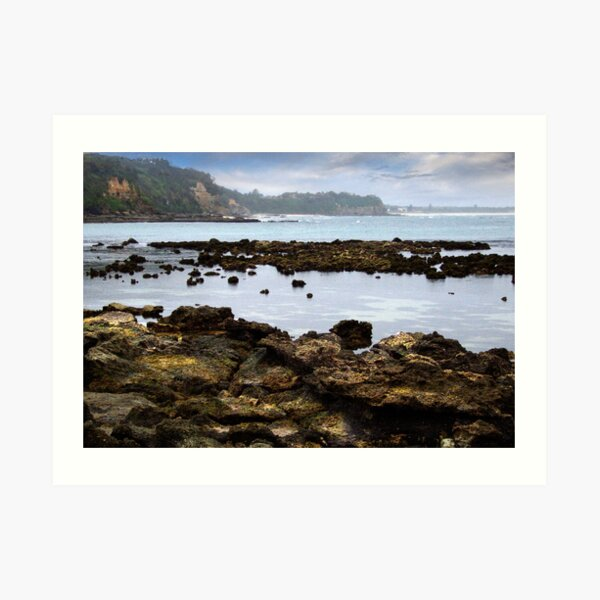 north from Cabbage Tree Bay Art Print