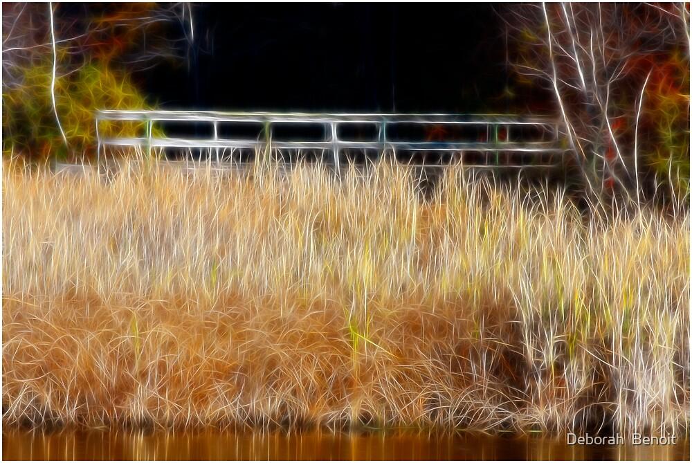 Golden Fall Grass by Deborah  Benoit