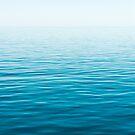 Infinite Horizon by Mieke Boynton