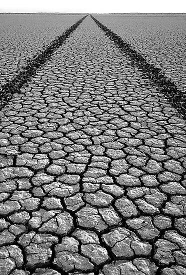 Road to Nowhere by Mieke Boynton