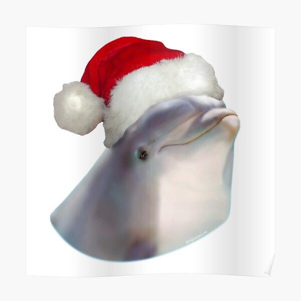 Christmas Santa Dolphin Poster