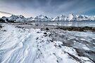 Winter at Spåkenes by Mieke Boynton