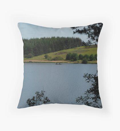 Lockwood Beck 11 Throw Pillow