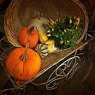 Autumn Bounty by shutterbug2010