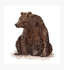 Watercolor illustration of a brown bear Photographic Print