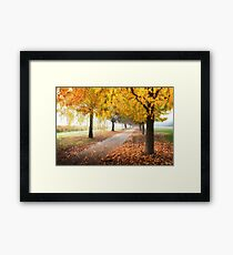 Boynton's Feathertop Winery #6 Framed Print