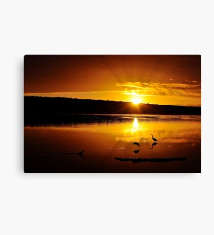 What a lovely start to the day. Canvas Print