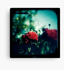 remember me to alice Canvas Print
