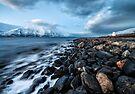 Lyngenfjord by Mieke Boynton