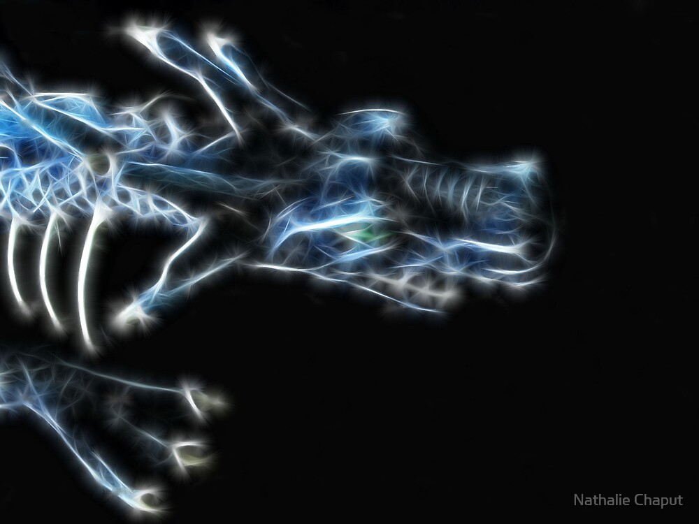 Blue Dragon by Nathalie Chaput