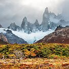 Autumn at Mt Fitz Roy by Mieke Boynton