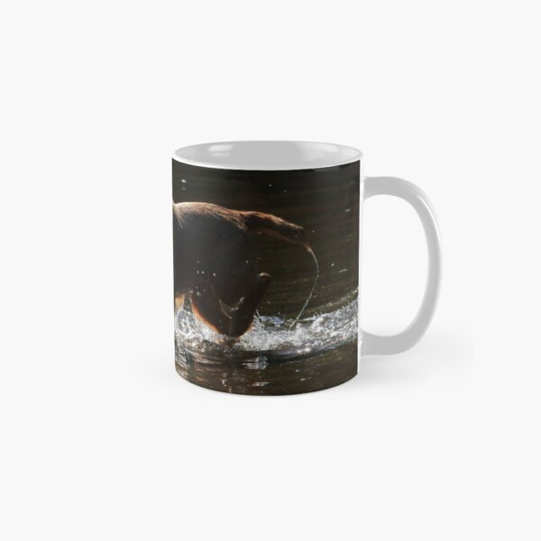Border terrier standing in river with tennis ball Classic Mug