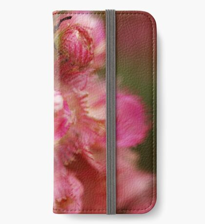 Verticordia Pink iPhone Wallet