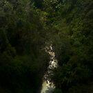 River by azbulutlu