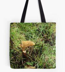 unusual shaped fungi Tote Bag