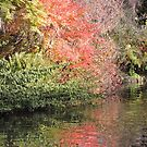 Autumn Red Reflected (Shrewsbury) by CreativeEm