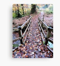 Leafing The Way Canvas Print