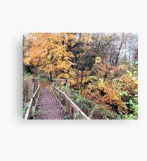 Walkway To Autumn (Dudmaston)  Canvas Print