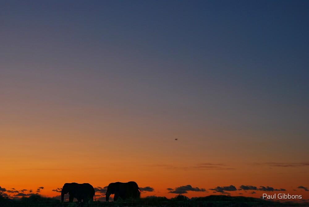 Safari Sunset by spottydog06